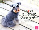 I LOVE ミニチュアシュナウザー カレンダー2020