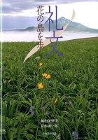 礼文花の島を歩く
