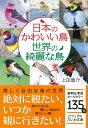 日本のかわいい鳥世界の綺麗な鳥 (ビジュアルだいわ文庫) [ 上田恵介 ]