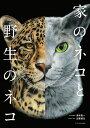 家のネコと野生のネコ [ 澤井聖一 ]