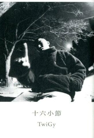 十六小節 ele-king books ([テキスト]) [ TwiGy ]