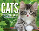 Cats 2017 Mini Day-To-Day Calendar [ Andrews McMeel Publishing ]