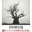 【楽天ブックス限定先着特典】SEKAI NO OWARI 2010-2019 (初回限定盤 2CD+LIVE BEST DVD)(デカ缶バッジ(76mm)) [ SEKAI NO OWARI ]