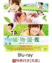 【先着特典】植物図鑑 運命の恋、ひろいました(クリアファイル付き)【Blu-ray】 [ 岩田剛典 ]