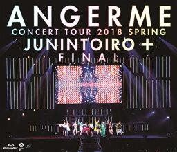 コンサートツアー2018春十人十色+ファイナル【Blu-ray】 [ <strong>アンジュルム</strong> ]