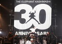 """30th ANNIVERSARY TOUR """"THE FIG..."""