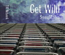 GET WILD SONG MAFIA [ TM NETWORK ]
