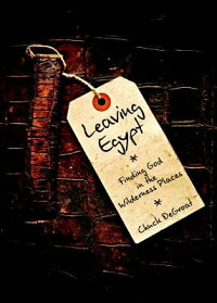 LeavingEgypt:FindingGodintheWildnernessPlaces