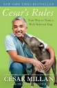 Cesar's Rules: Your Way to Train a Well-Behaved Dog CESARS RULES [ Cesar Millan ]