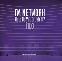 TM NETWORK How Do You Crash It? two AFTER PAMPHLET (リットーミュージック)