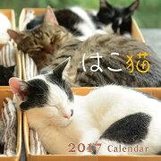 2017年リング付きカレンダー はこ猫