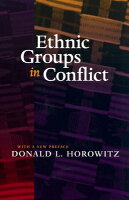 ethnic group conflict Ethnic groups in conflict, neighboring governments, and interstate war gigi gokcek dominican university of california 50 acacia avenue san rafael, california 94901 usa.