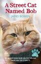 STREET CAT NAMED BOB,A(B) [ JAMES BOWEN ]