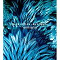 BLUE APPLES 〜born-again〜