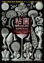 粘菌 知性のはじまりとそのサイエンス 特徴から研究の歴史、動画撮影法、アート、人工知能への応用まで