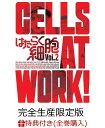 【全巻購入特典対象】はたらく細胞 2(完全生産限定版) [ ...