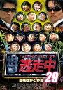 逃走中29 〜run for money〜 奥様はかぐや姫 [ 飯尾和樹 ]