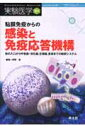 粘膜免疫からの感染と免疫応答機構