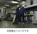 DVD>階層・職種別パワー・ハラスメントシリーズ(2) [ 岡田康子 ]