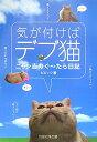 気が付けばデブ猫 ニャン吉のぐ〜たら日記 [ ビビック ]