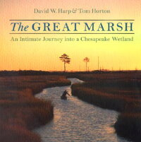 The_Great_Marsh��_An_Intimate_J