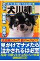 犬川柳(チワワ編)