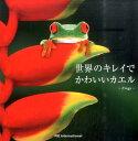 世界のキレイでかわいいカエル Frogs [ パイインターナショナル ]