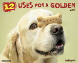 12 Uses for a Golden Calendar [Willow Creek Press ][12 Uses for a Golden Calendar [ Willow Creek Press ]]