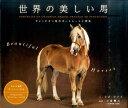 世界の美しい馬 チャンピオン馬のポートレートと特長 [ リズ・ライト ]