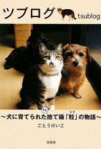 ツブログ 犬に育てられたもと捨て猫「粒」の物語