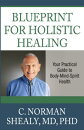 Blueprint for Holistic Healing: Your Practical Guide to Body-Mind-Spirit Health