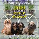 2019年大判カレンダー ミニチュア・ダックスフンド [ 井川 俊彦 ]