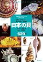 日本の貝 温帯域・浅海で見られる種の生態写真+貝殻標本 (ネイチャーウォッチングガ