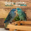 2019年大判カレンダー コンパニオン・バード インコ&オウム [ 大橋 和宏 ]