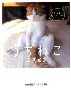 うちねこ写真集(2)