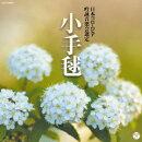 ��� ʿ����Ȭǯ��(������)�����ӥ������ӥ����� ����� CD ������