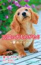 天国の犬ものがたり(夢のバトン) (小学館ジュニア文庫) [ 藤咲あゆな ]