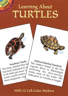 LEARNING ABOUT TURTLES [ JAN SOVAK ]