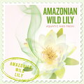 SCENTS OF THE WORLD〜 THE BODY SHOP AMAZONIAN WILD LILY