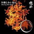 お前しかいねぇ 遊turing RED RICE (from湘南乃風) (初回限定盤A CD+DVD)