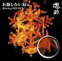 お前しかいねぇ 遊turing RED RICE (from湘南乃風) (初回限定盤A CD+DVD) [ 遊助 ]