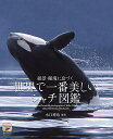 世界で一番美しい シャチ図鑑 絶景・秘境に息づく (ネイチャー・ミュージアム) [ 水