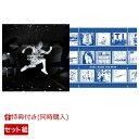 【同時購入特典+先着特典】スターマーカー (通常盤)+KANA-BOON THE BEST (初回限定盤 2CD+Blu-ray) (カレンダーポスター+ジャケット絵柄ステッカー+他) [ KANA-BOON ]