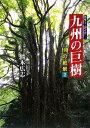 九州の巨樹
