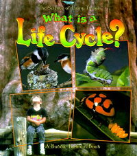 What_Is_a_Life_Cycle��