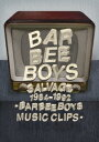 SALVAGE 1984-1992 BARBEE BOYS MUSIC CLIPS(仮) [ バービ