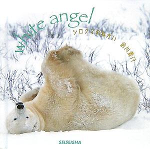 シロクマのねがい White angel (Se...の商品画像