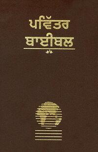 Punjabi_Bible-FL-Easy_to_Read