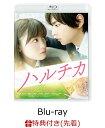 【先着特典】ハルチカ(特製ハルチカA5ノート付き)【Blu-ray】 [ 佐藤勝利 ]