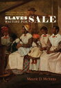 楽天楽天ブックスSlaves Waiting for Sale: Abolitionist Art and the American Slave Trade SLAVES WAITING FOR SALE [ Maurie D. McInnis ]